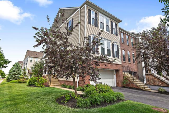 344 Modesta Road, Columbus, OH 43213 (MLS #219018727) :: Signature Real Estate