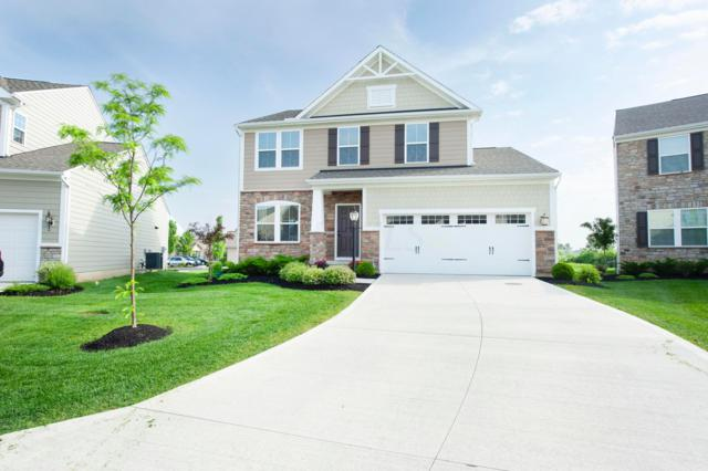 6143 Brandon Drive, Lewis Center, OH 43035 (MLS #219018741) :: RE/MAX ONE