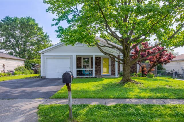 8632 Seabright Drive, Powell, OH 43065 (MLS #219018759) :: Signature Real Estate