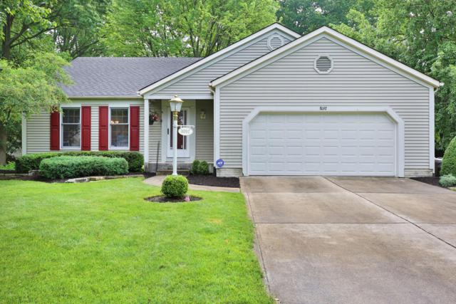 8092 Winter Hill Court, Westerville, OH 43081 (MLS #219018891) :: Signature Real Estate