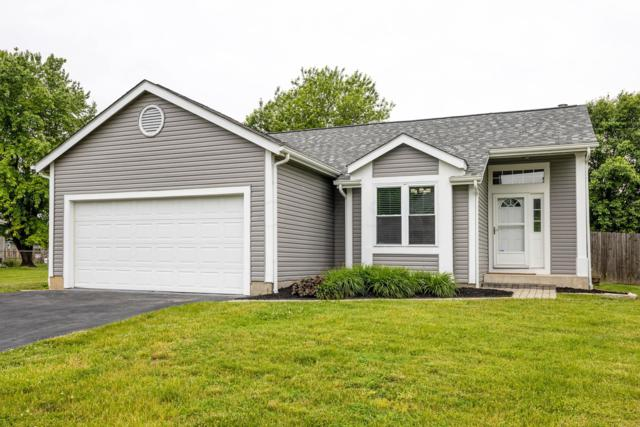 6160 Shelba Drive, Galloway, OH 43119 (MLS #219018917) :: The Clark Group @ ERA Real Solutions Realty