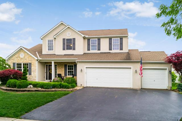 6252 Tallowtree Drive, Hilliard, OH 43026 (MLS #219018938) :: RE/MAX ONE