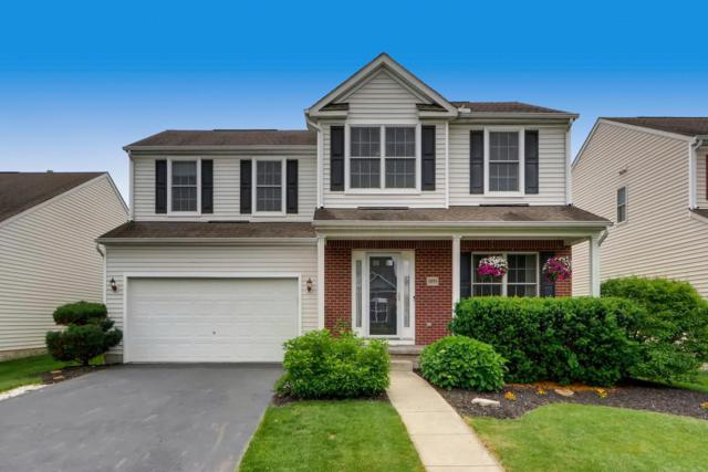 5895 Winebrook Drive, Westerville, OH 43081 (MLS #219018964) :: Huston Home Team