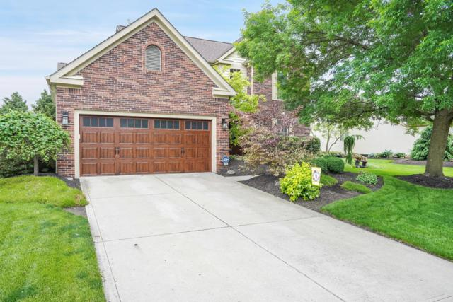 824 Claytonbend Drive, Galloway, OH 43119 (MLS #219018971) :: Huston Home Team