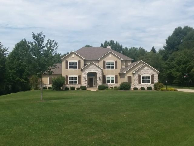7193 Hoover Reserve Court, Westerville, OH 43081 (MLS #219018979) :: Huston Home Team