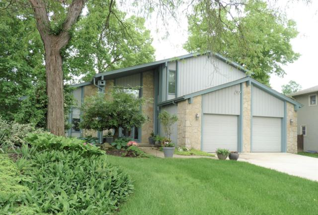 207 Shagbark Drive, Westerville, OH 43081 (MLS #219018998) :: The Clark Group @ ERA Real Solutions Realty