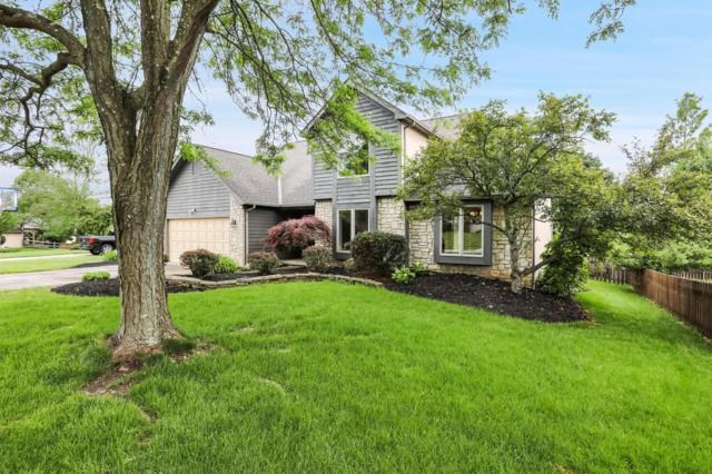 689 Stag Place, Gahanna, OH 43230 (MLS #219019009) :: The Clark Group @ ERA Real Solutions Realty
