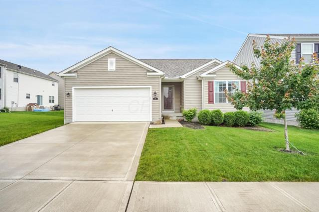 851 Orwell Street, Lithopolis, OH 43136 (MLS #219019066) :: Signature Real Estate