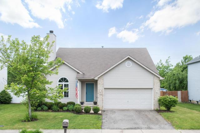 1898 Ashburn Drive, Delaware, OH 43015 (MLS #219019100) :: The Clark Group @ ERA Real Solutions Realty