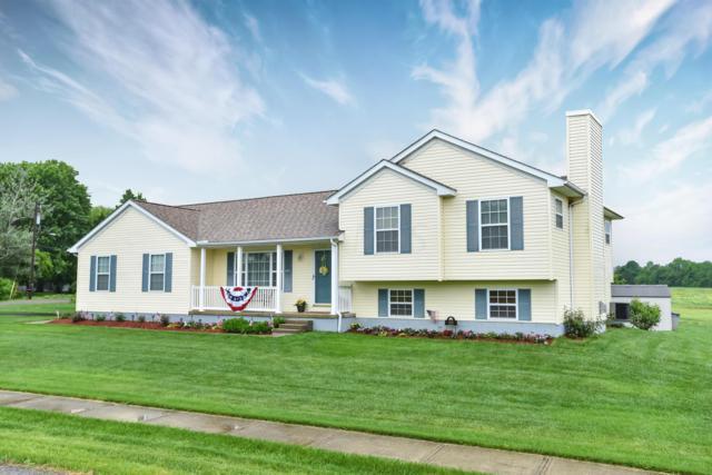600 Park Street, Cardington, OH 43315 (MLS #219019108) :: Berkshire Hathaway HomeServices Crager Tobin Real Estate