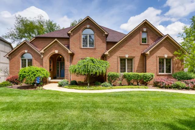 648 Lookout Ridge Drive, Westerville, OH 43082 (MLS #219019116) :: Brenner Property Group | Keller Williams Capital Partners