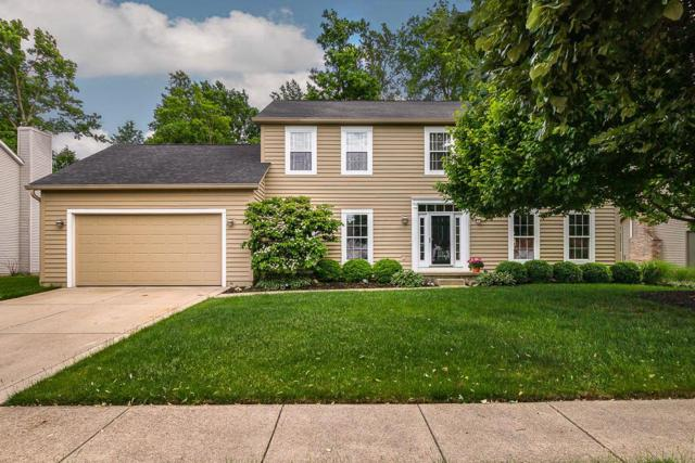 6049 Holywell Drive, Dublin, OH 43017 (MLS #219019139) :: Signature Real Estate