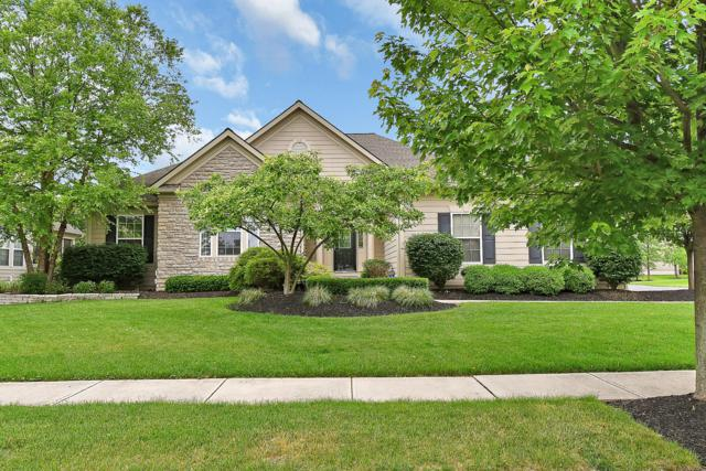 7447 Welbley Street, Blacklick, OH 43004 (MLS #219019187) :: RE/MAX ONE