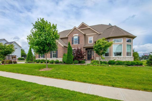 5733 Trafalgar Lane, Dublin, OH 43016 (MLS #219019205) :: The Clark Group @ ERA Real Solutions Realty