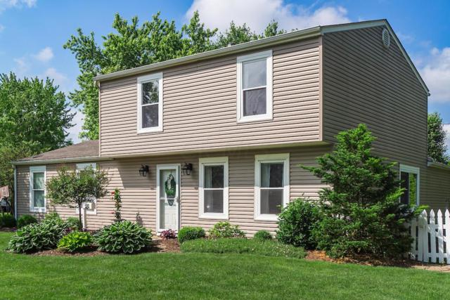225 Burns Drive, Westerville, OH 43081 (MLS #219019206) :: Signature Real Estate
