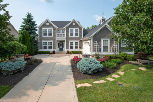 1138 Forsyth Lane, Galena, OH 43021 (MLS #219019238) :: RE/MAX ONE