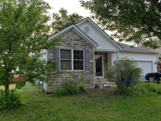 796 Canal Street, Delaware, OH 43015 (MLS #219019257) :: The Clark Group @ ERA Real Solutions Realty