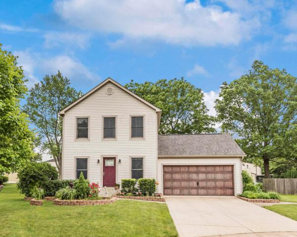 4906 Strawberry Glade Drive, Columbus, OH 43230 (MLS #219019409) :: Signature Real Estate