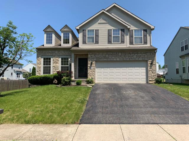 7614 Blacklick Ridge Boulevard, Blacklick, OH 43004 (MLS #219019436) :: Signature Real Estate