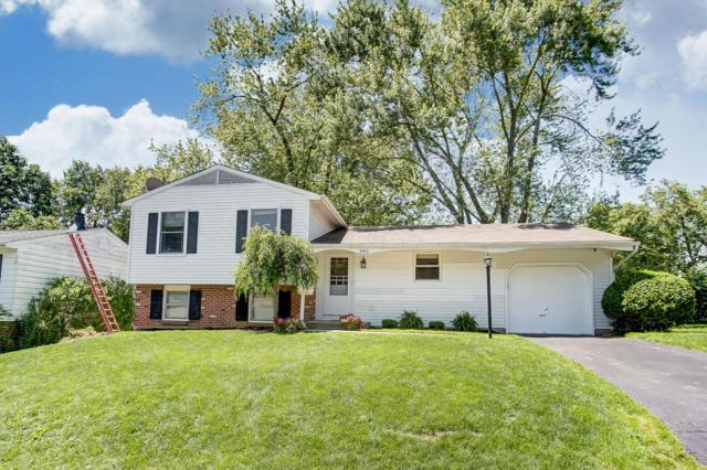 5943 Dakar Road E, Westerville, OH 43081 (MLS #219019464) :: Signature Real Estate