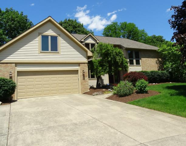 691 Vivian Court, Columbus, OH 43230 (MLS #219019466) :: RE/MAX ONE