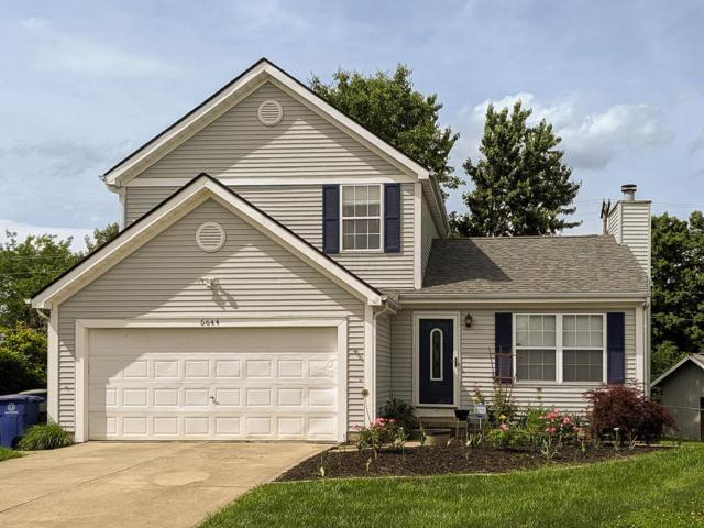 5644 Idella Drive, Galloway, OH 43119 (MLS #219019524) :: The Clark Group @ ERA Real Solutions Realty