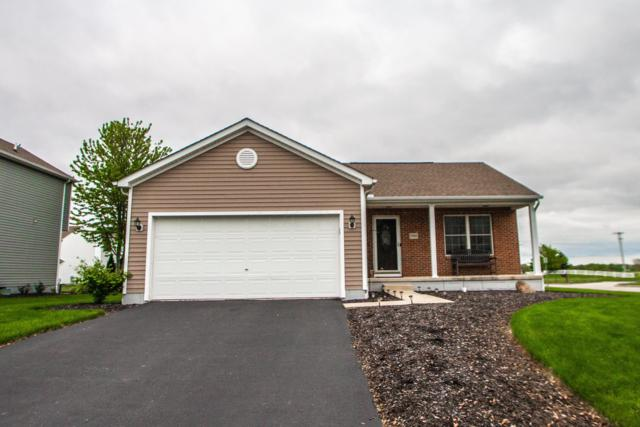 1900 Bobtail Lane, Marysville, OH 43040 (MLS #219019547) :: Huston Home Team