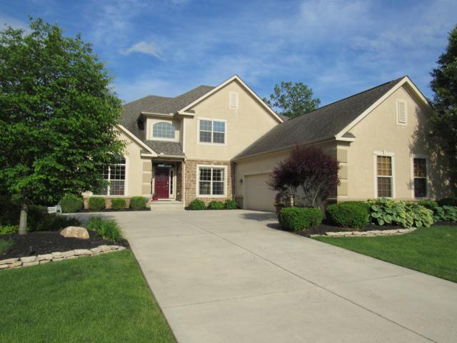 7784 Rowles Drive, Columbus, OH 43235 (MLS #219019548) :: Signature Real Estate