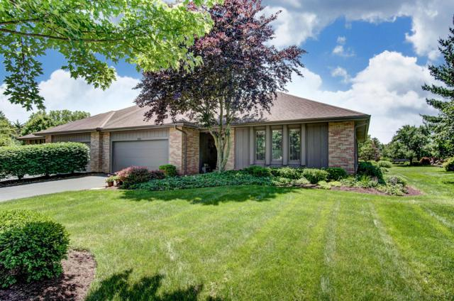 5313 Laidon Court, Dublin, OH 43017 (MLS #219019593) :: The Clark Group @ ERA Real Solutions Realty