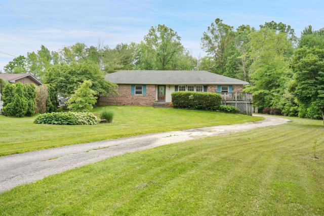 8081 Morse Road, New Albany, OH 43054 (MLS #219019725) :: Signature Real Estate