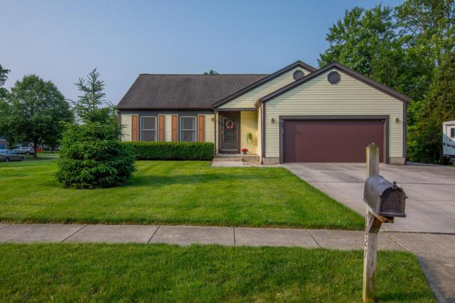 1027 Oakshade Drive, Columbus, OH 43230 (MLS #219019788) :: Huston Home Team