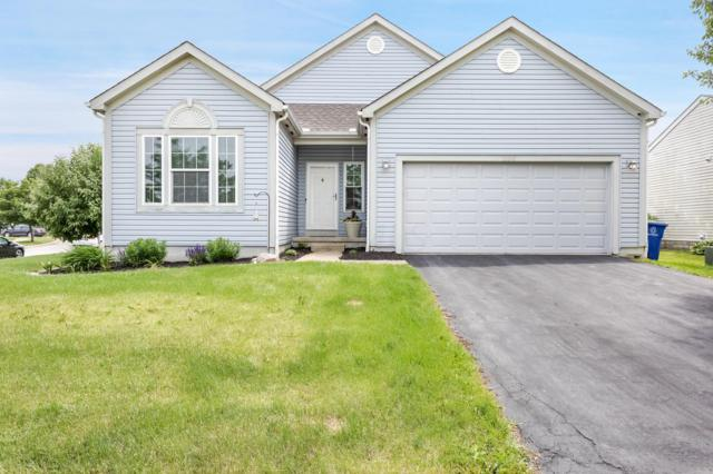 1100 Benhower Drive, Blacklick, OH 43004 (MLS #219019789) :: The Clark Group @ ERA Real Solutions Realty