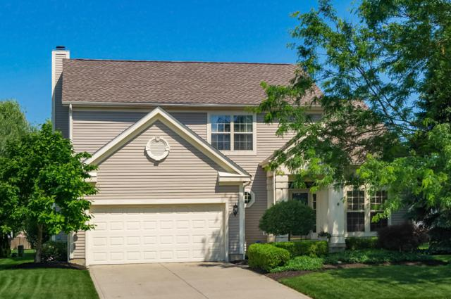 7794 Gladshire Boulevard, Lewis Center, OH 43035 (MLS #219019860) :: The Clark Group @ ERA Real Solutions Realty