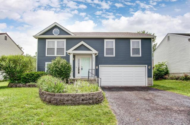 5901 Sundrops Avenue, Galloway, OH 43119 (MLS #219019863) :: The Clark Group @ ERA Real Solutions Realty