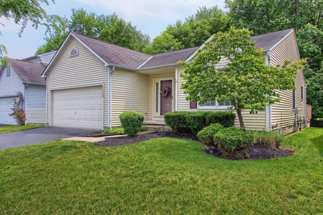 7003 Weurful Drive, Canal Winchester, OH 43110 (MLS #219019880) :: Brenner Property Group | Keller Williams Capital Partners