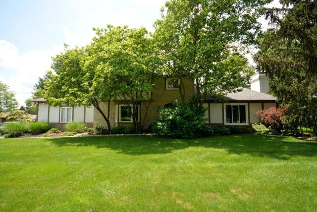 64 Marrus Drive, Gahanna, OH 43230 (MLS #219019919) :: Signature Real Estate