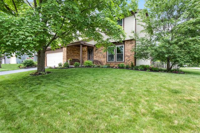 242 W Carlin Court, Gahanna, OH 43230 (MLS #219019926) :: Signature Real Estate