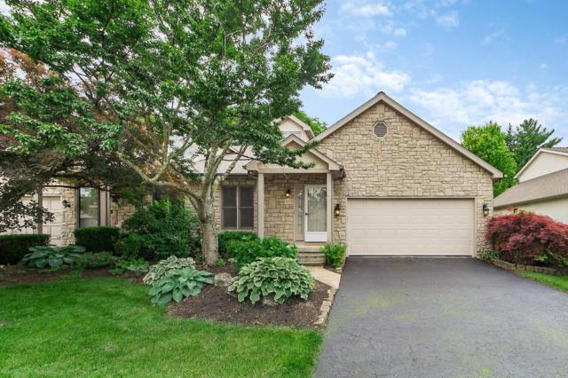 5673 Forest Grove Avenue, Westerville, OH 43081 (MLS #219019995) :: Signature Real Estate