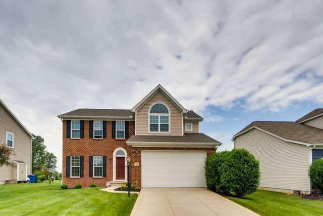 768 Maple Vista Drive, Delaware, OH 43015 (MLS #219020051) :: Brenner Property Group | Keller Williams Capital Partners