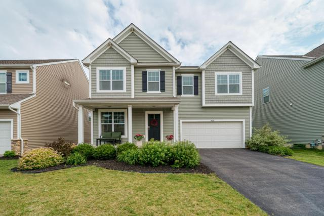 8626 Aconite Drive, Blacklick, OH 43004 (MLS #219020062) :: The Clark Group @ ERA Real Solutions Realty