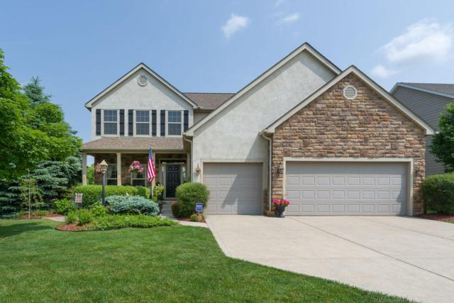 5555 Aster Way, Galena, OH 43021 (MLS #219020099) :: Huston Home Team