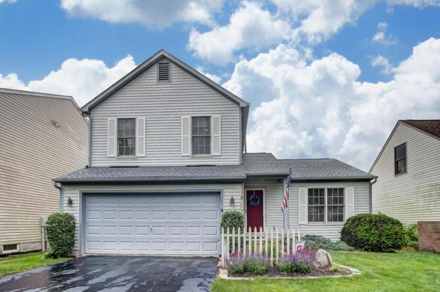 384 Galloway Ridge Drive, Galloway, OH 43119 (MLS #219020105) :: Signature Real Estate