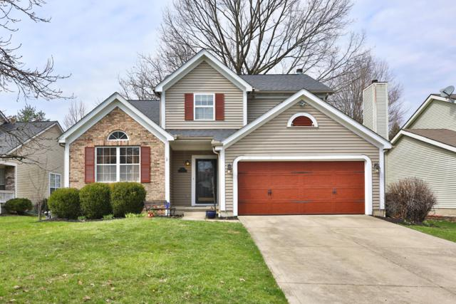 3674 Whitworth Way, Columbus, OH 43228 (MLS #219020184) :: RE/MAX ONE