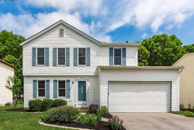 3122 Strathaven Court, Dublin, OH 43017 (MLS #219020219) :: The Clark Group @ ERA Real Solutions Realty