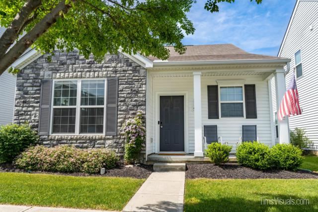 5880 Ivy Branch Drive, Dublin, OH 43016 (MLS #219020267) :: Brenner Property Group | Keller Williams Capital Partners