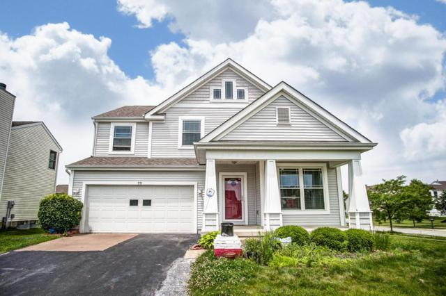 771 Lilly Landing Lane, Blacklick, OH 43004 (MLS #219020342) :: The Raines Group