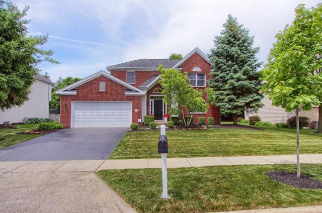 7733 Ardaugh Court, Dublin, OH 43017 (MLS #219020395) :: Signature Real Estate