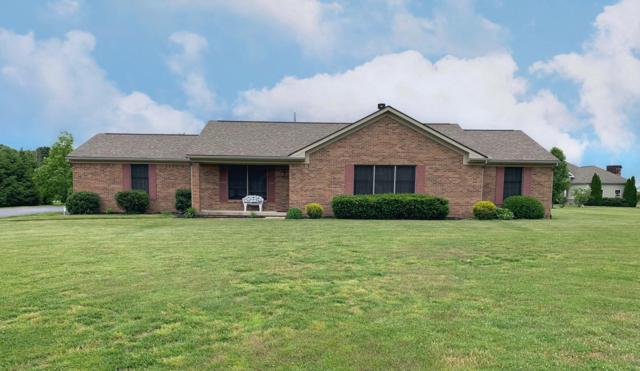 3597 Mason Road NW, Canal Winchester, OH 43110 (MLS #219020424) :: CARLETON REALTY