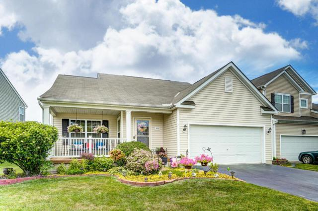 393 Hemhill Drive, Galloway, OH 43119 (MLS #219020455) :: Signature Real Estate