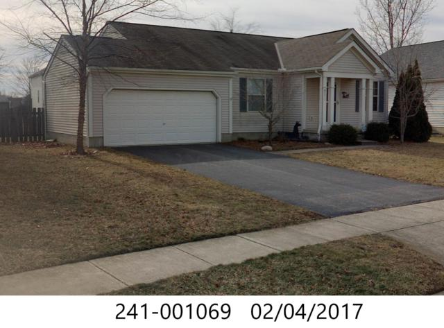 8573 Squad Drive, Galloway, OH 43119 (MLS #219020498) :: Signature Real Estate